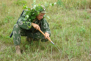 Từ vựng camouflage
